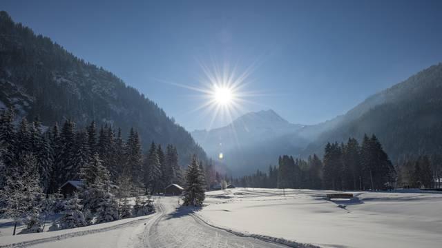 Nordic ski domain