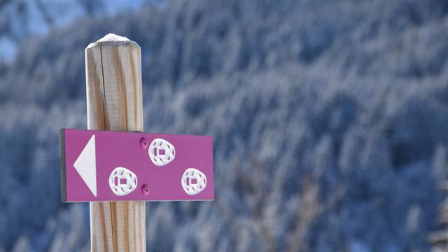 Idées randonnées en raquettes à neige