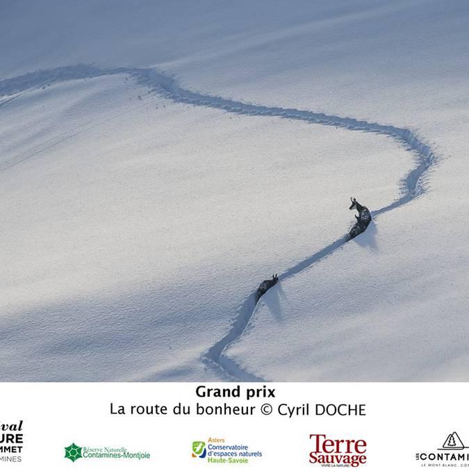 Grand Prix Festival Nature au Sommet 2016 © Cyril Doche