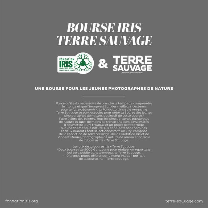Bourse Iris - Terre Sauvage